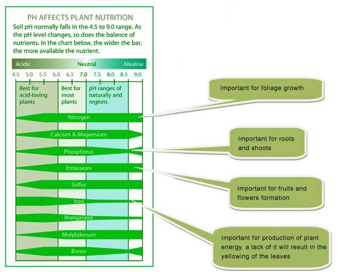 Basic Information About Organic Fertilizers  U0026 Lime