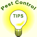 Pest control tips pop-up (allow Pop-Ups in your Browser)